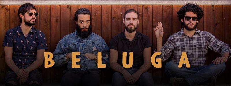 Beluga band